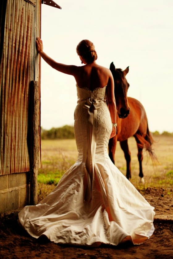 Bride and Horse Stable