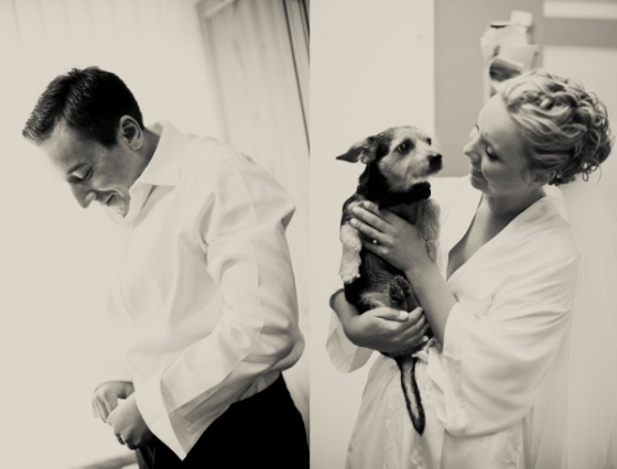groom bride dog wedding
